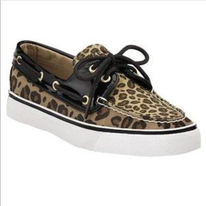 Sperry Top-Sider Leopard Print Shoes. Size:8M.
